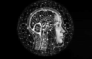 A Neuroscience Professor's Brain Power Short Course (Part 1 of 3)