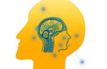 Applying Behavioural Science